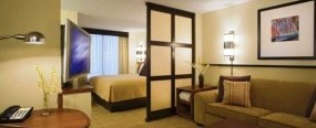 Спальня-гостиная: Как организовать спальную зону